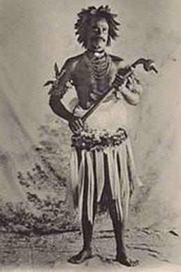fidjikrigare