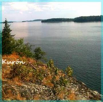 kuron (2)