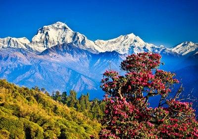 nepal111