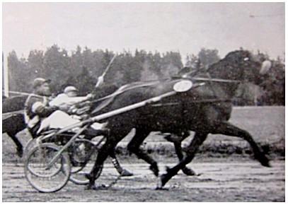 brandver1953