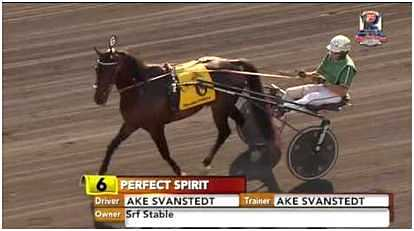 Perfect Spirit Åke Svanstedt