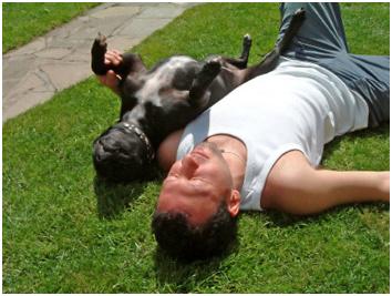 sunbathing-man-and-dog