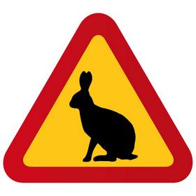 kaniner2