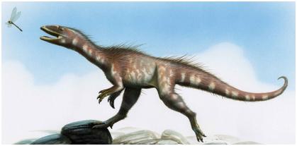 Dracoraptor hannigan