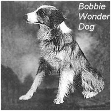 bobbiez1