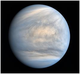 Venus1