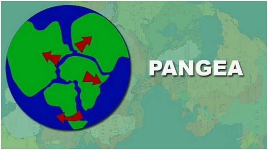 Pangea1