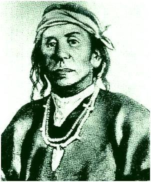 cochisenat