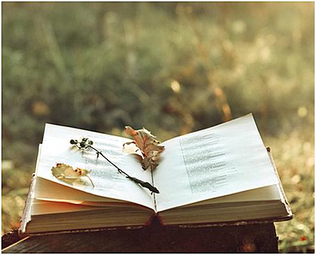 poesin