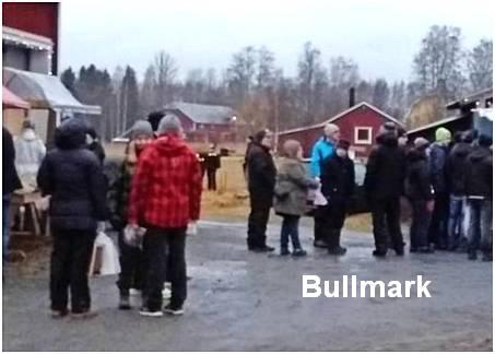 forsbullmark11